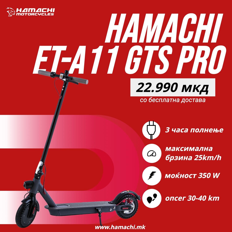 HAMACHI ET-A11 GTS Pro 12A (40 батерии x 3000 mAh)
