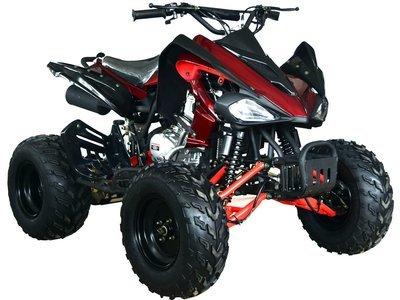JONWAY ATV 250 - 6