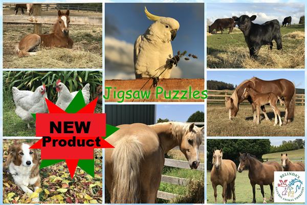 Animal Jigsaw Puzzles A4 - 240 Piece