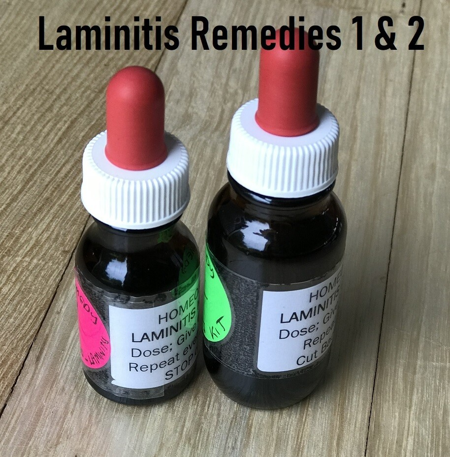 Laminitis Homeopathic remedies 1 & 2