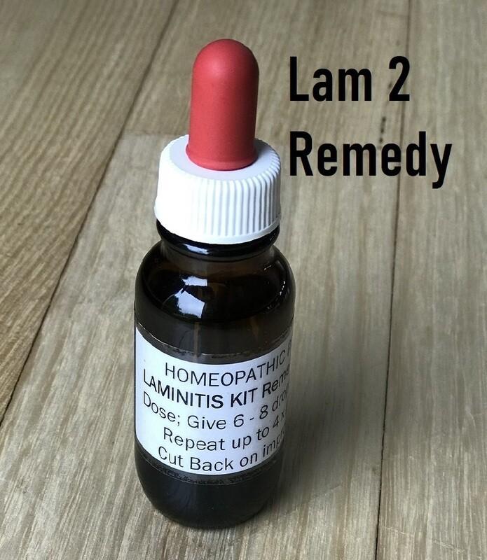 Laminitis Remedy 2