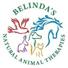 Belinda's Natural Product Store