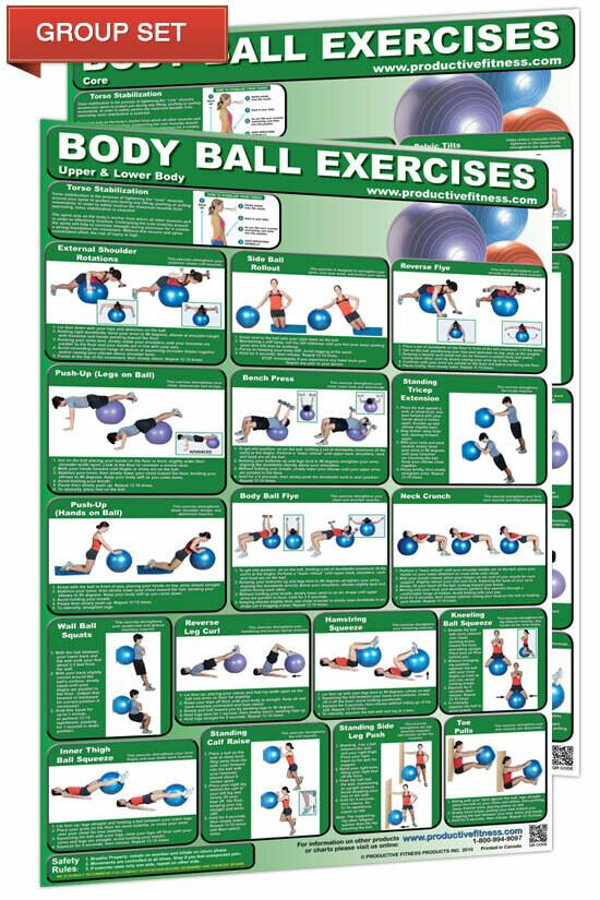 Body Ball / Stability Ball Chart Set (2 poster set,  24x36 each)
