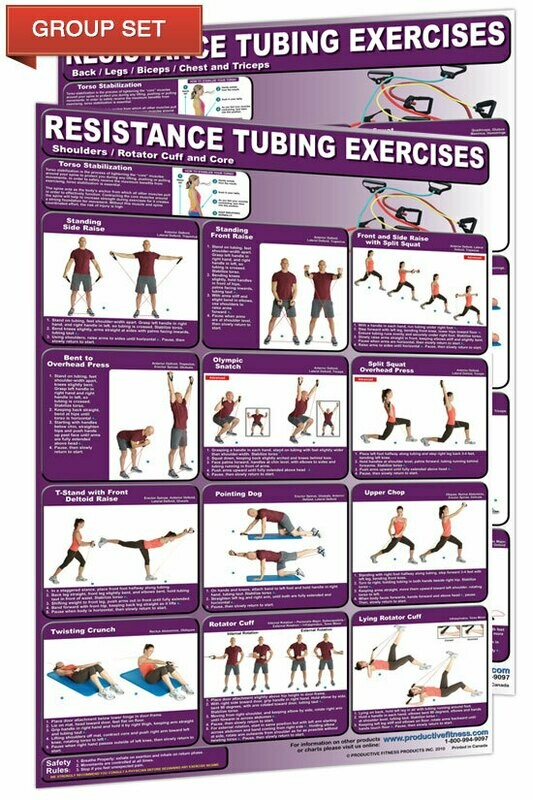 Resistance Tubing Chart Set (2 poster set, 24x36 each)