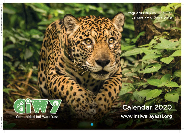 2020 Wall Calendar/ Calendario de Pared 2020