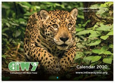 2020 Wall Calendar/ Calendario de Pared 2020
