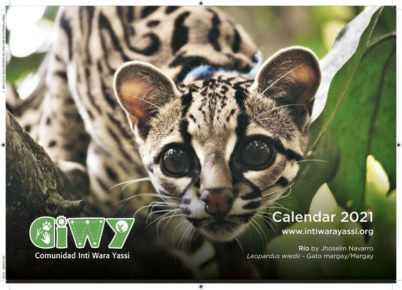 2021 Desk Calendar/ Calendario de Escritorio 2021