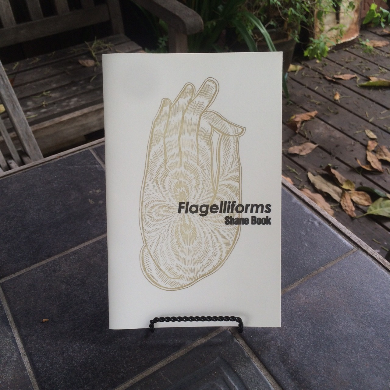 Flagelliforms, by Shane Book