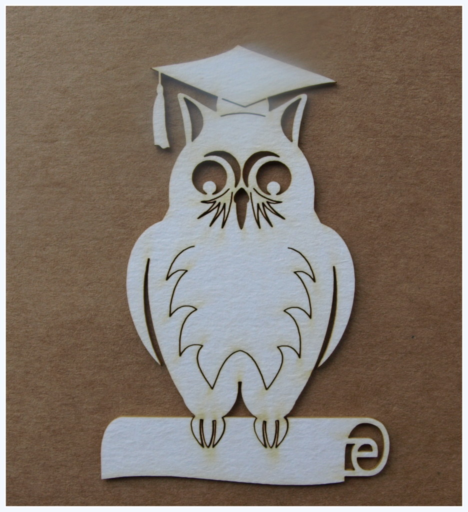 Owl with Diploma