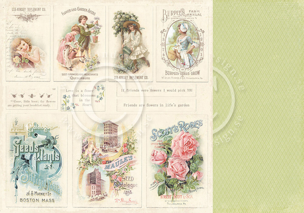 PION DESIGN Vintage Garden - Images From the Past