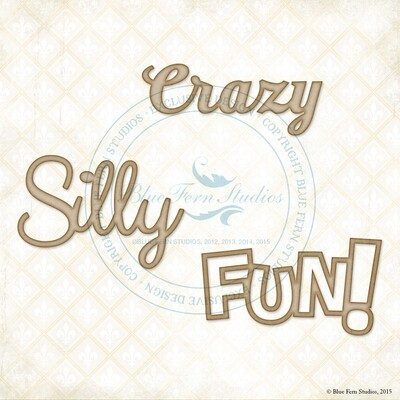 Crazy, Silly, Fun