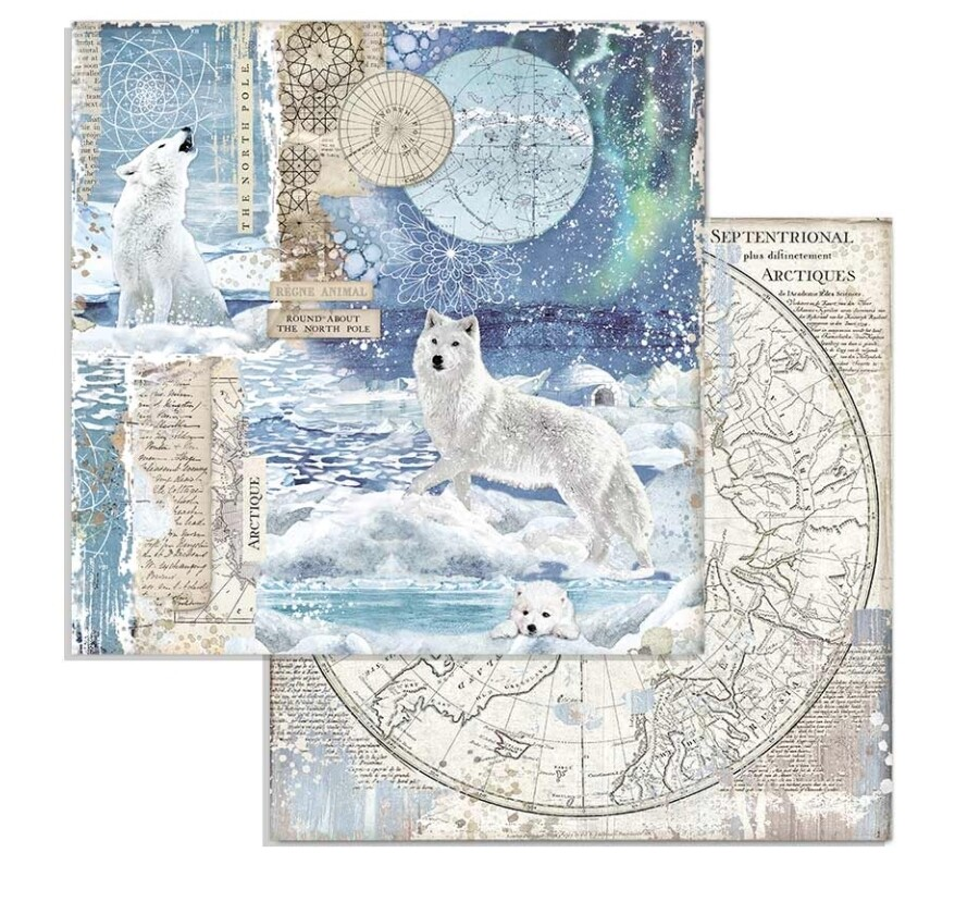 STAMPERIA ARCTIC ANTARCTIC 12X12 Wolf Single Sheet