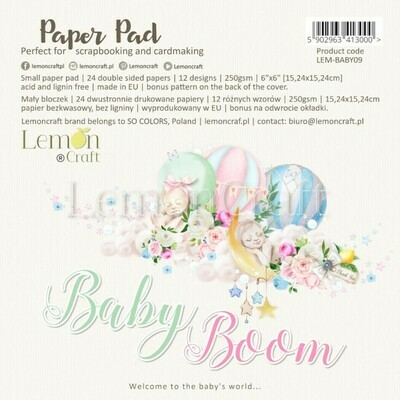 Baby Boom 6X6 Paper Collection