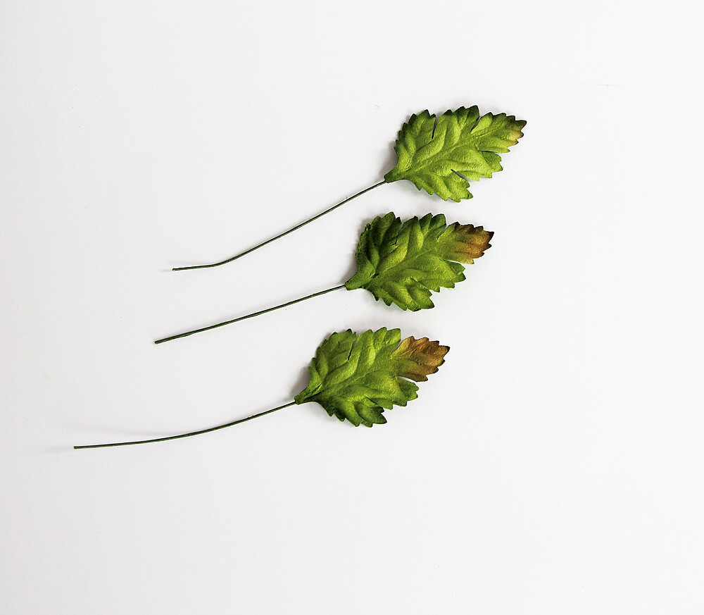Mulberry Paper Wild Rose Leaves