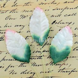 Mulberry Paper 2 Tone Rose Leaves