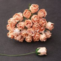 Rose Buds - Click to Select