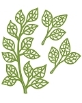 Creative Expressions - Mosaic Leaves