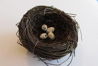 Decorative Bird's Nest