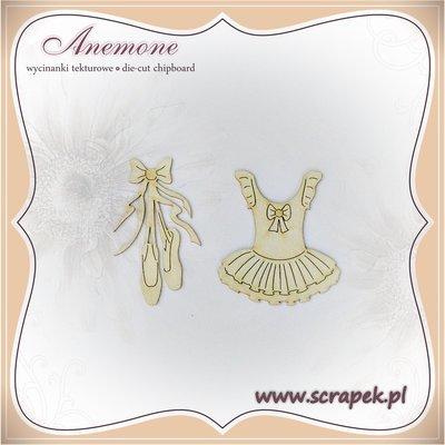 Ballerina Tutu & Pumps