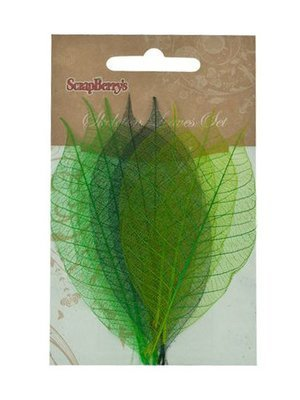 Skeleton Leaves - Click to Select