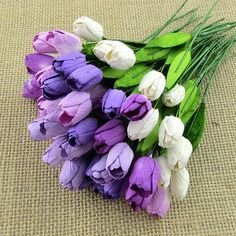 Tulips - Click to Select