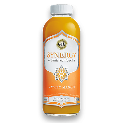 GT's - Enlightened Kombucha - Mango - 480 mL (3-5 Day Lead Time)