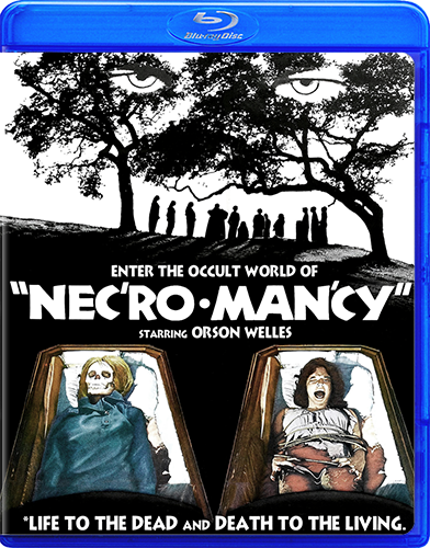 Necromancy [Blu-ray Rental]
