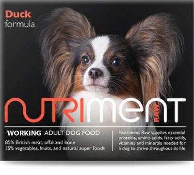 Adult - Duck - 500g Tub