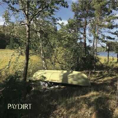 Paydirt (Vinyl record 2020)