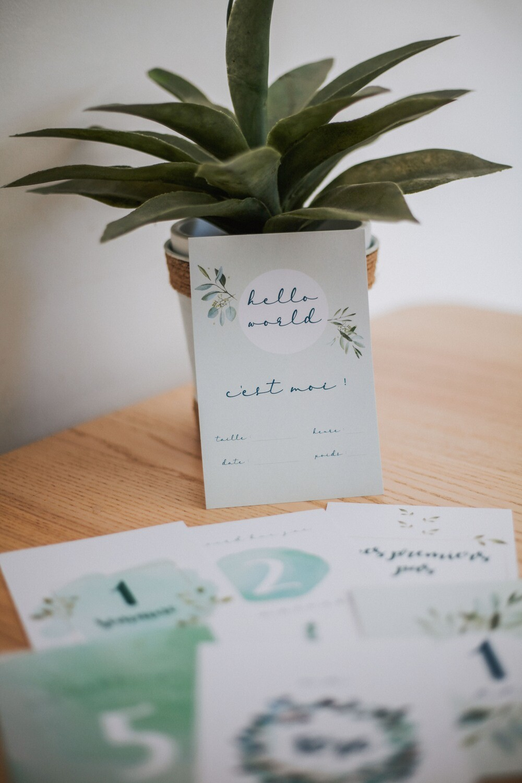 Kit cartes étapes bébé