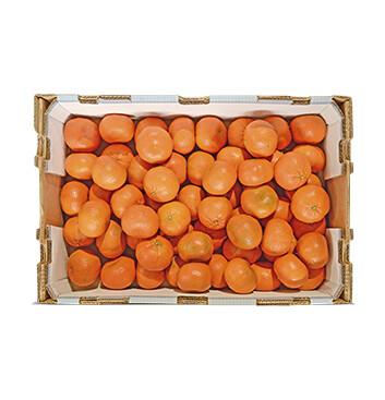 Caja de Mandarinas Clementina - 22 Libras