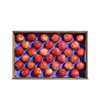 Caja de Manzana Gala - Infantil (Cal. 175-198) - 40 Libras