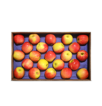 Caja de Manzanas Cripps Pink - Mediana (Cal. 150-163) - 40 Libras