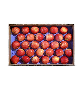 Caja de Manzana Gala - Mediana (Cal. 150-163) - 40 Libras