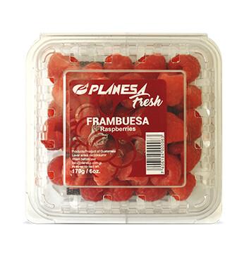 Clamshell Frambuesa - Planesa - 6oz.