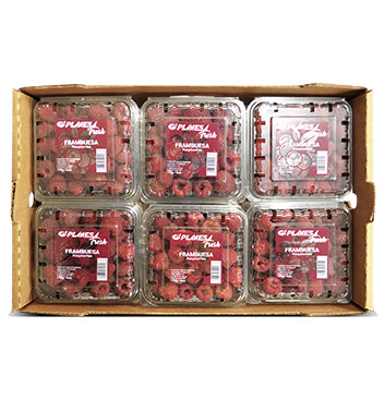Caja Clamshell Frambuesa - Planesa - 12 Unidades - 6oz.