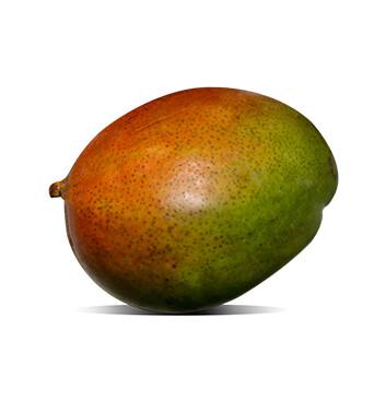 Mango Tommy - Unidad