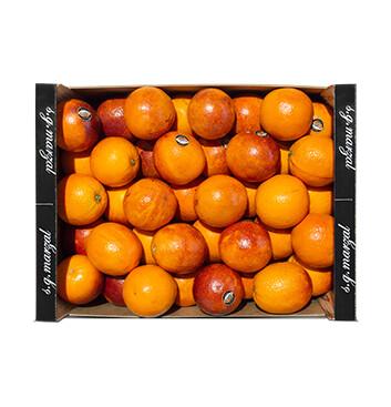 Caja Naranja Sanguinelli - Gustavo Ferrada - Cal 4/5 - 22Lb