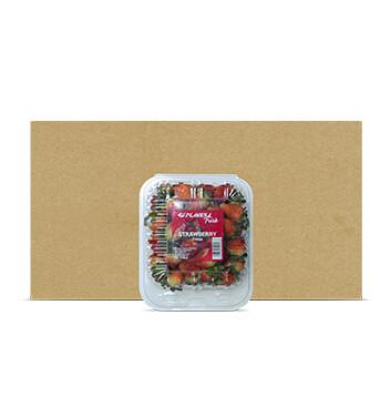 Caja Clamshell Fresa - Planesa - 12 Unidades - 1Lb