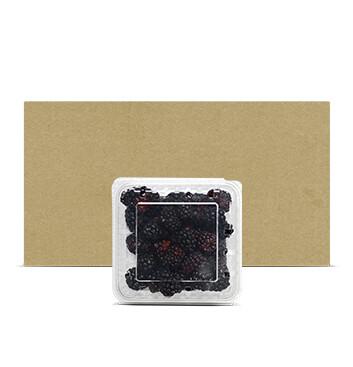 Caja Clamshell Mora - 12 Unidades - 170g