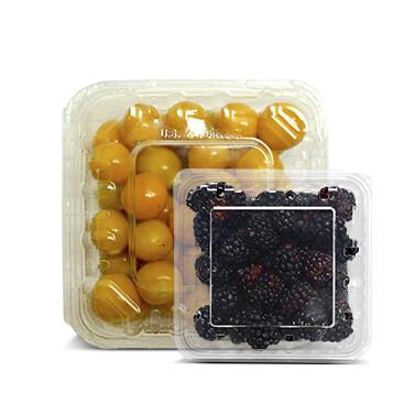Clamshell  Golden Berry - Cosecha del Dia - 150g + Mora