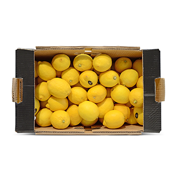 Caja de Limones Amarillos (Cal. 110/115) - 37 Libras