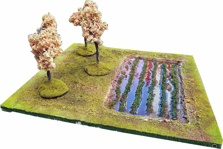 Rice Plantation (Extra Tile)