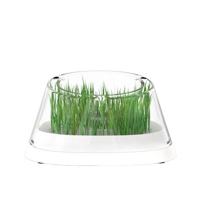 Moboli Secret Forest Cat Bowl with Cat Grass