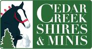 Cedar Creek Shires & Minis