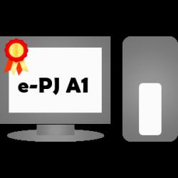e-CNPJ A1 (armazenado no computador)