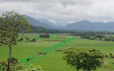 Project 100,000 (90,000 Moringa trees)