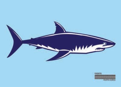 Shark Flag