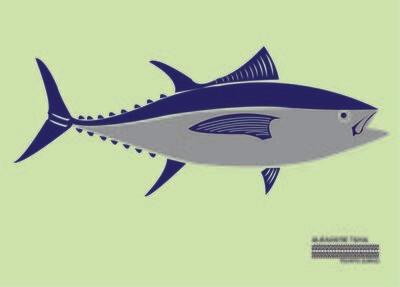 Albacore Tuna Flag