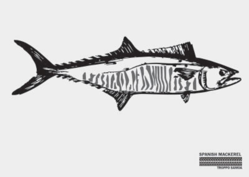 Spanish Mackerel Flag